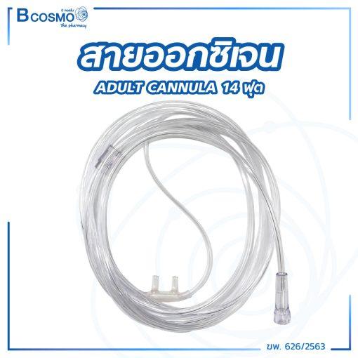 EO0101 14
