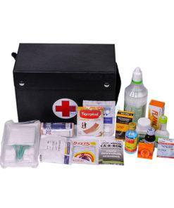 เซ็ตกระเป๋าปฐมพยาบาลเล็ก พร้อมยา