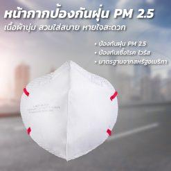 [1 ชิ้น ] หน้ากากอนามัย N95 V-4400 VENUS