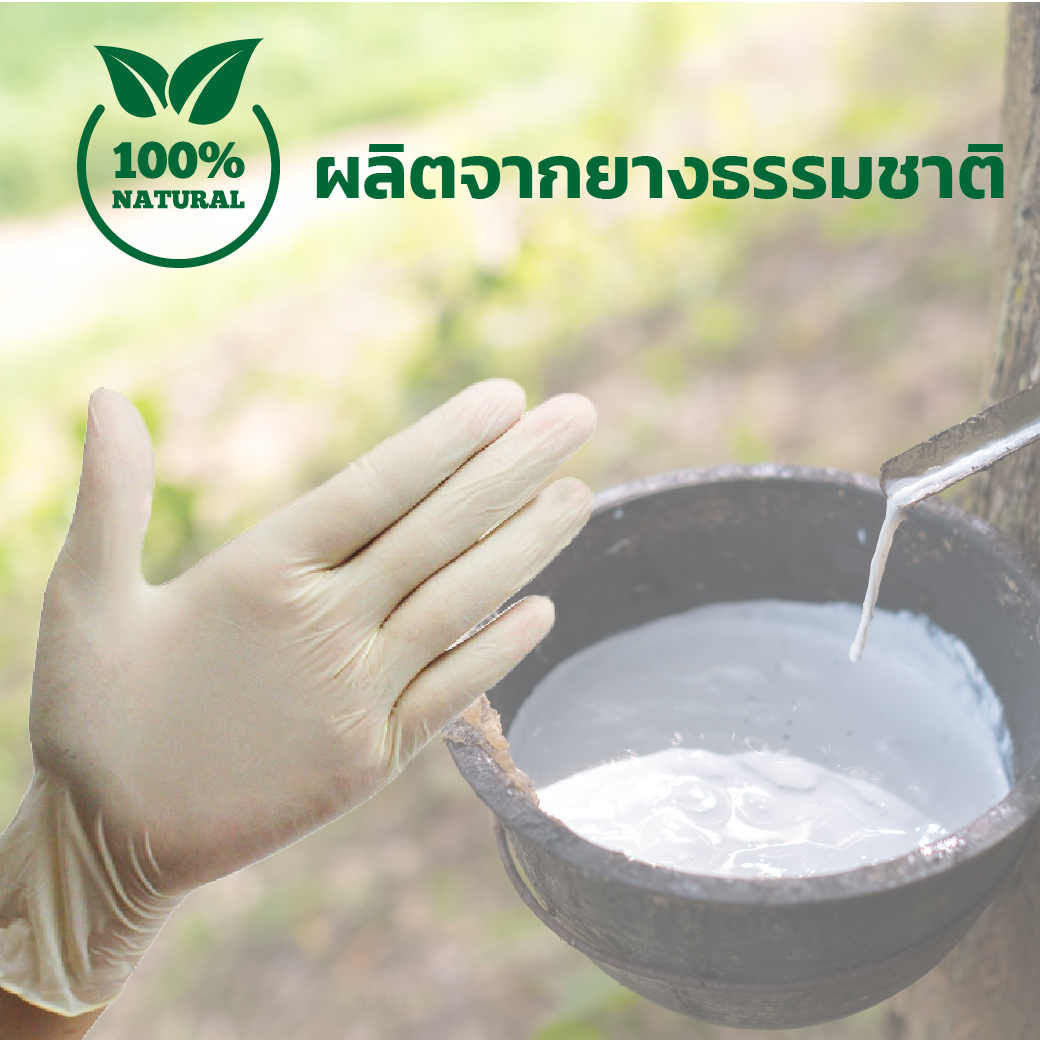 EF0729 M ถุงมือยาง 9 Disposable Exam Gloves 100s SIZE M 8