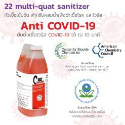 22 มัลติ-ควอทแซนิไทเซอร์ 22 Multi-Quat Sanitizer 2 l.